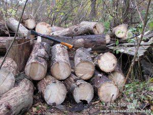 Распиловка на дрова