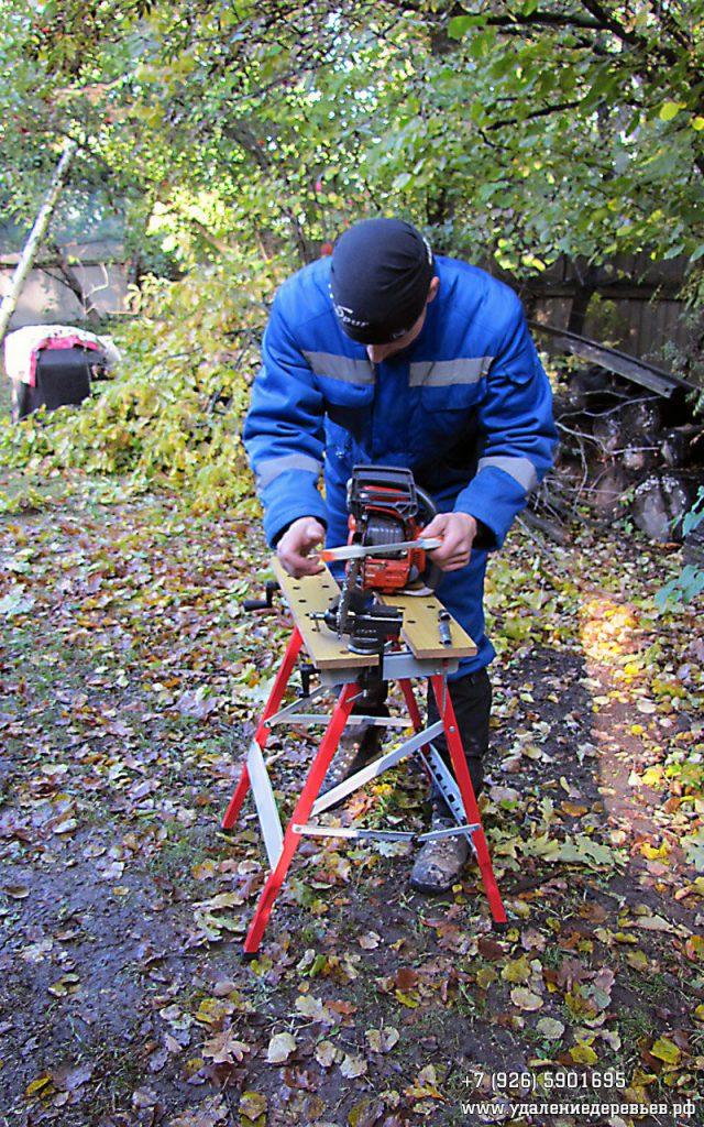 Заточка цепи бензопилы в процессе работы, Видное, Ленинский район Московской области