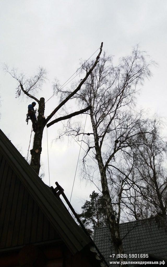 Спуск-двухподвес части ствола над крышей бани в Салтыковке (Балашиха, Московская область)